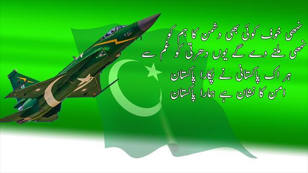 Pakistani Milli Naghmay (National Songs) Offline screenshot 8