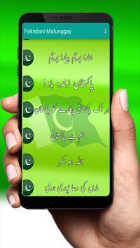 Pakistani Milli Naghmay (National Songs) Offline screenshot 9
