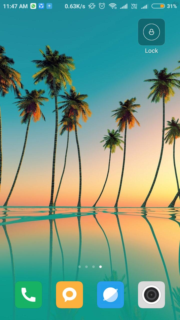 Palm Tree Wallpaper Hd For Android Apk Download