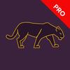 Proxy VPN Segura Libera Apps Internet Ilimitado icono