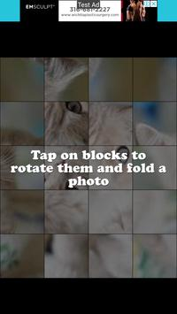 Puzzle Cute Cat capture d'écran 3