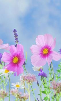 Beautiful flower 1 screenshot 3