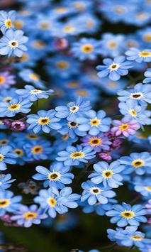 Blue flower screenshot 2