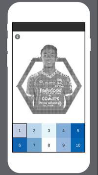 Persib Coloring by Number screenshot 4