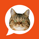 WAStickerApps Cat Stickers For WhatsApp APK Android
