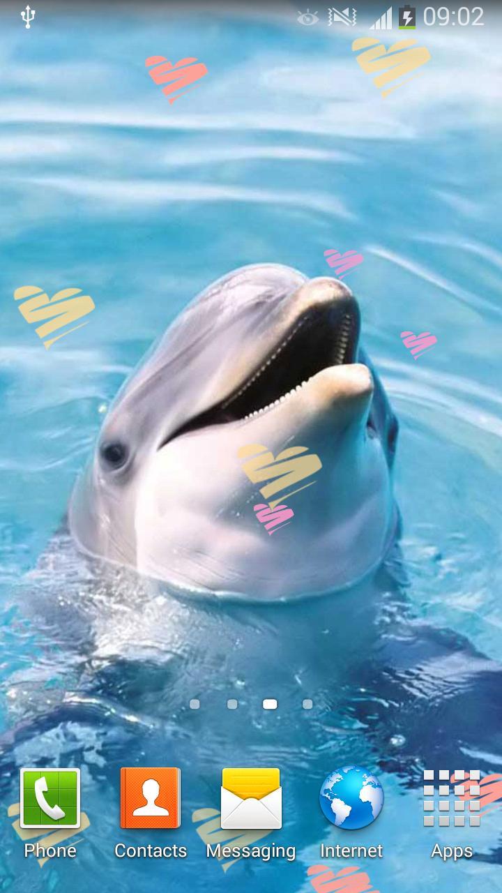 Android 用の デスクトップ 動物の壁紙 かわいい写真 Apk をダウンロード