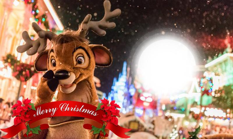 Merry Christmas Images 2020.Merry Christmas Photo Frames 2020 For Android Apk Download