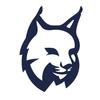 Lynx иконка