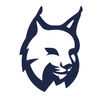 Lynx ícone