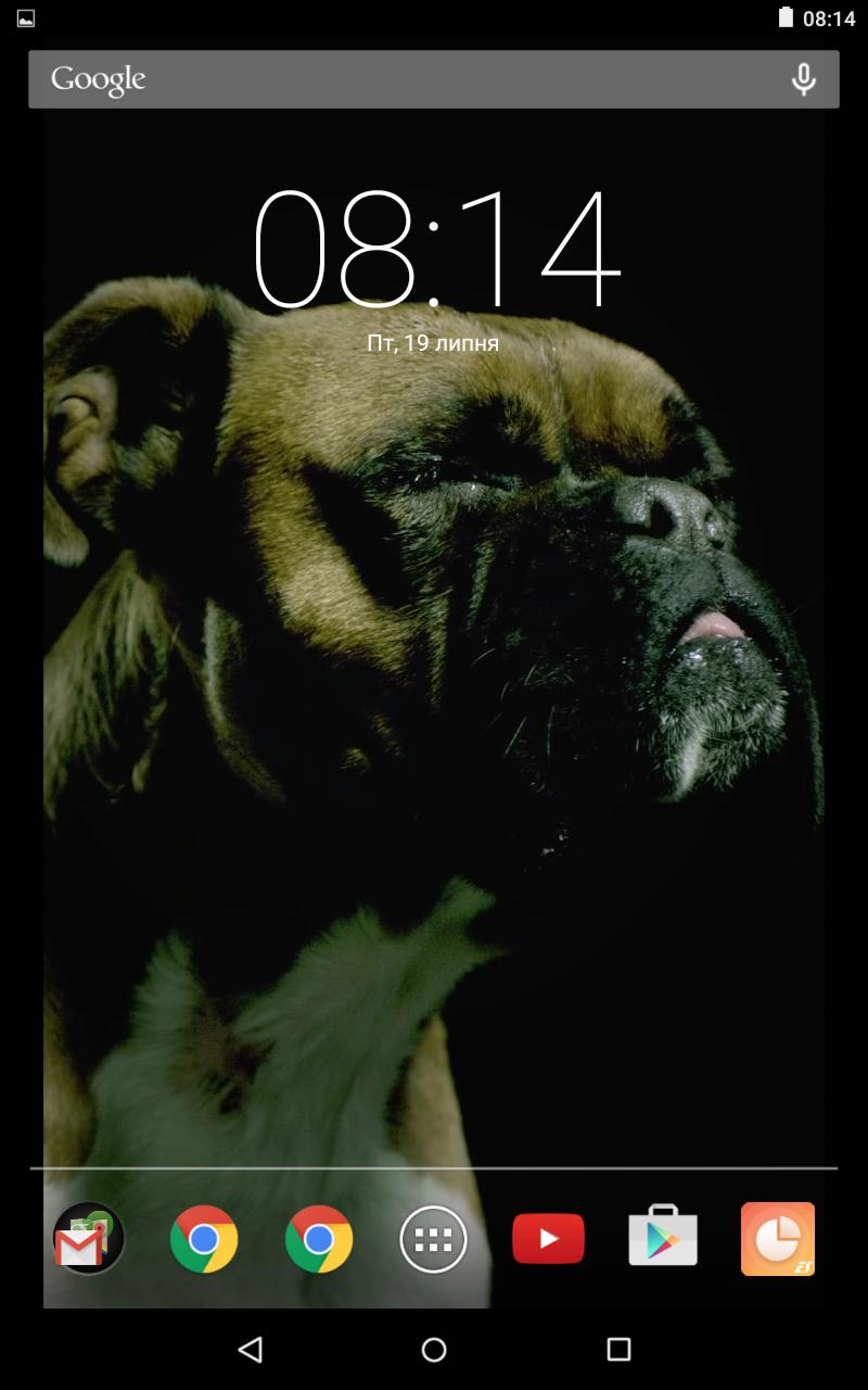 Cute Dog Slow Motion Video Live Wallpaper for Android - APK