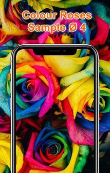 Colorful Roses Wallpapers HD screenshot 4