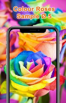 Colorful Roses Wallpapers HD screenshot 5