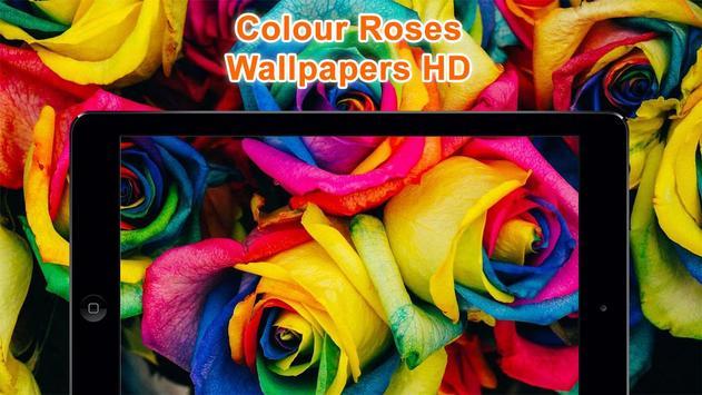 Colorful Roses Wallpapers HD screenshot 6