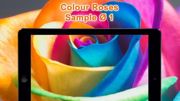 Colorful Roses Wallpapers HD screenshot 7