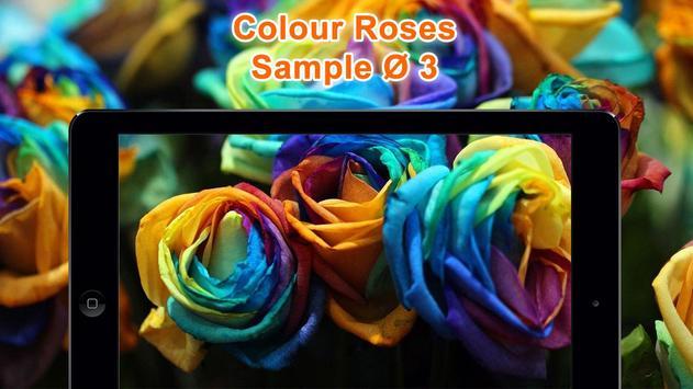 Colorful Roses Wallpapers HD screenshot 9