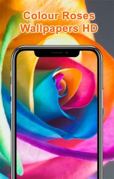 Colorful Roses Wallpapers HD poster
