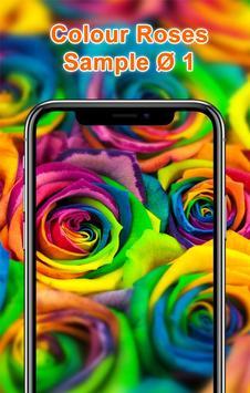 Colorful Roses Wallpapers HD screenshot 1
