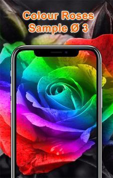 Colorful Roses Wallpapers HD screenshot 3