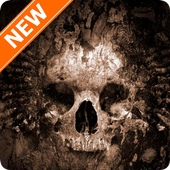 Skull Wallpapers icon