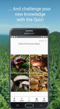 Mushroom Identify - Automatic picture recognition screenshot 16