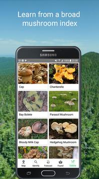 Mushroom Identify - Automatic picture recognition screenshot 4