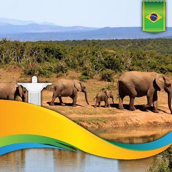 Brazil Flag Football World Cup Photo Frames screenshot 1