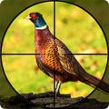Fasan-Shooter: Armbrustvögel, die FPS-Spiele jagen