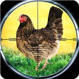 Chicken Shoot Safari Hunting