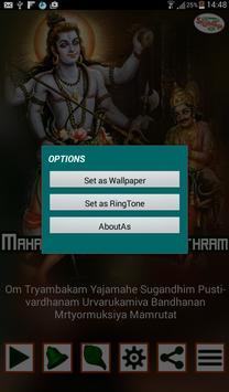 MahaMruthyanjaya Mantra screenshot 17
