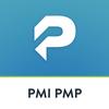 PMP أيقونة
