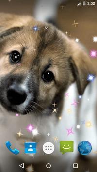 Puppy Live Wallpaper screenshot 4