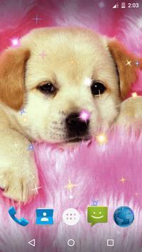 Puppy Live Wallpaper screenshot 5