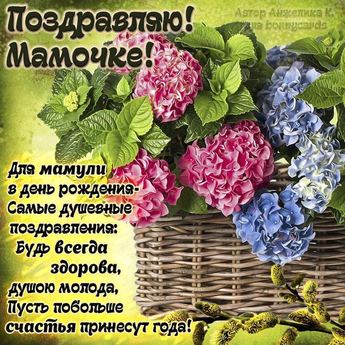 сочные поздравления с днем рождения по курской области официальный сайт шустер журналист телеведущий