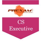CS-Executive icon