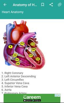 Anatomy of Human Body Organs screenshot 2
