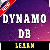 Learn Dynamodb icon