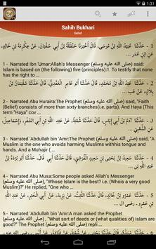 Hadith Collection screenshot 9