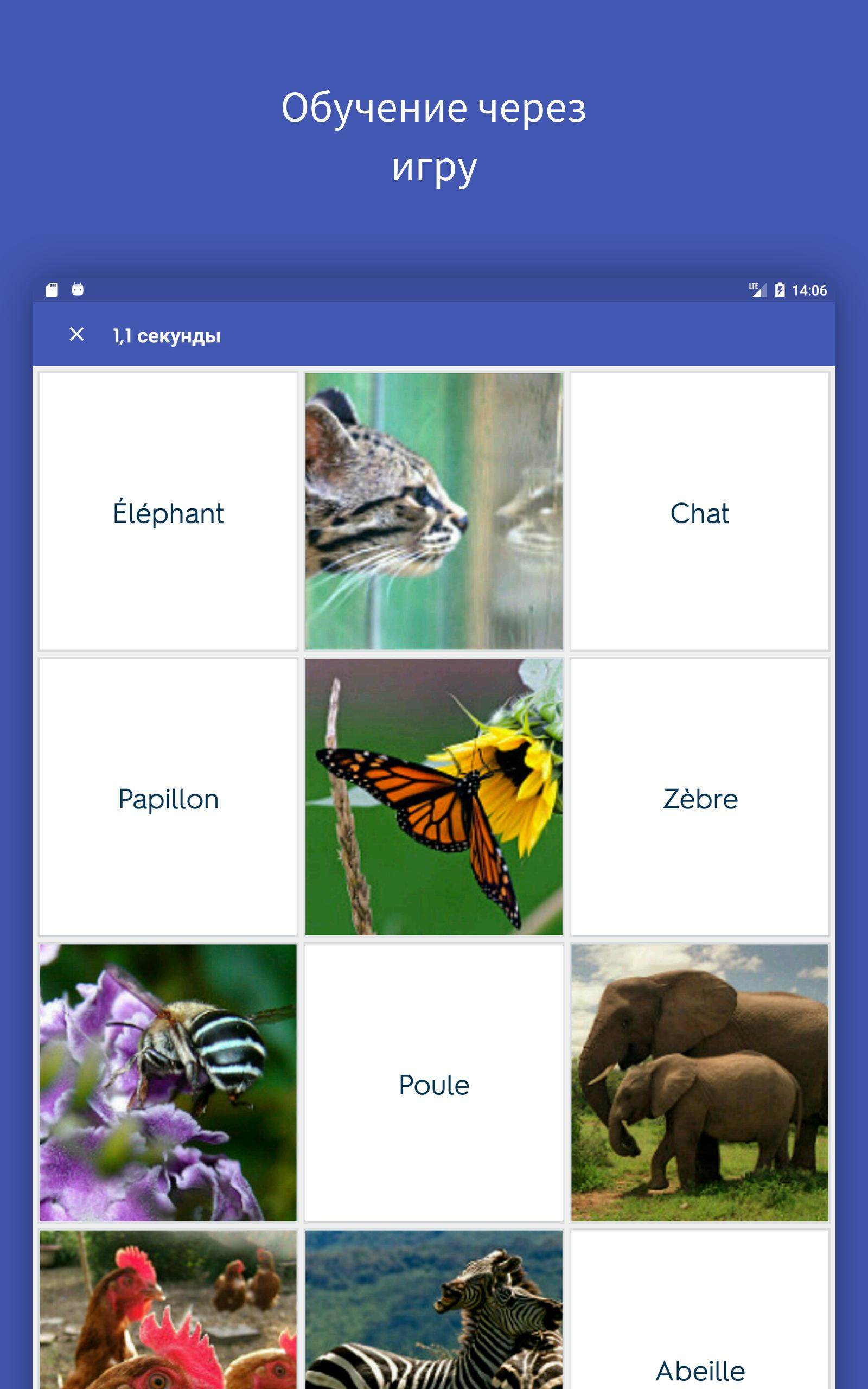 Quizlet для Андроид - скачать APK