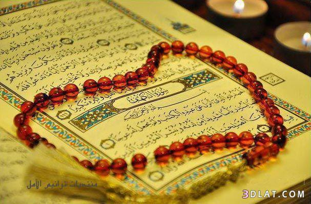 Quran Karim Flash القران الكريم فلاش For Android Apk Download