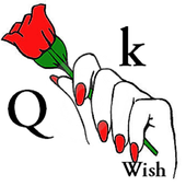 Qik Wish icon