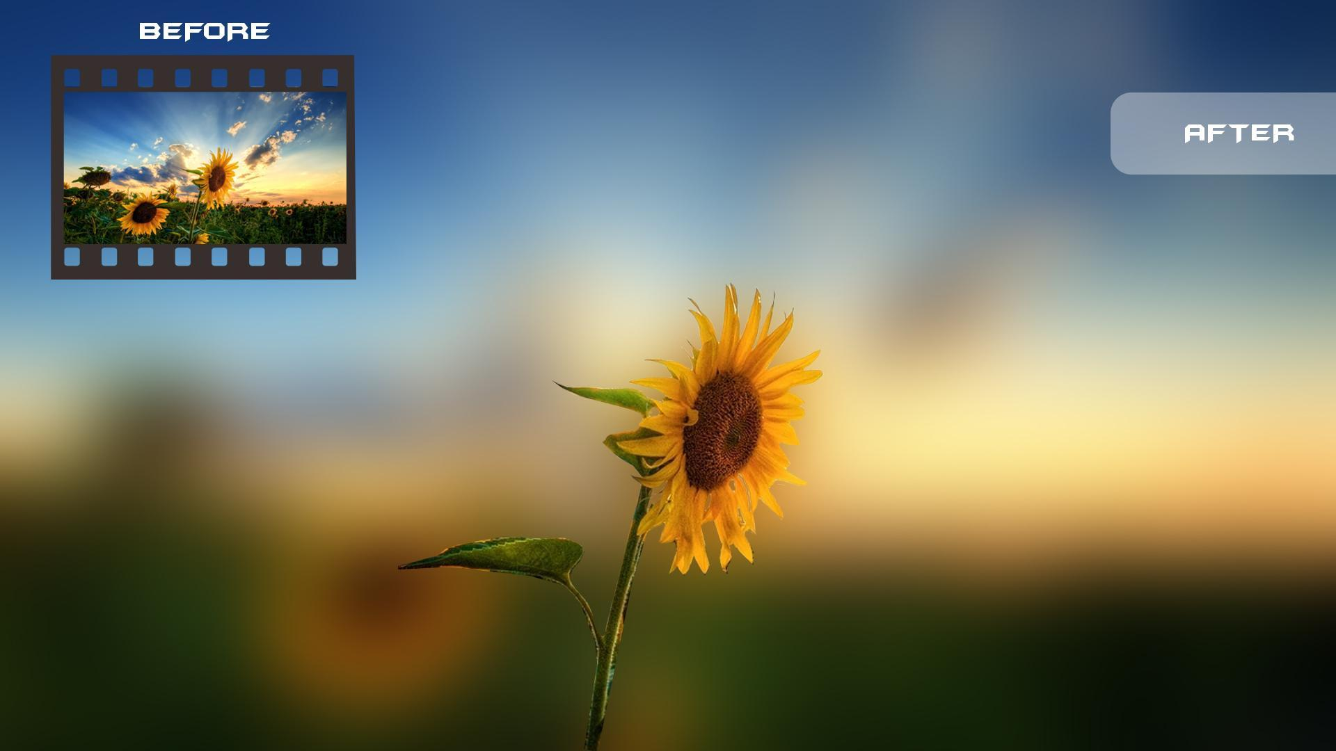 Blur Photo Background Dslr Camera Bokeh Effect For Android