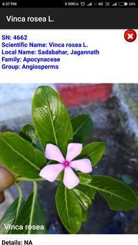 Classification of Plants and Fungi screenshot 4