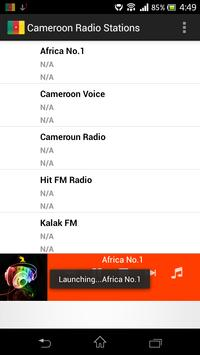 Cameroon Radio Stations poster