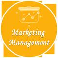 Marketing Management Offline Book