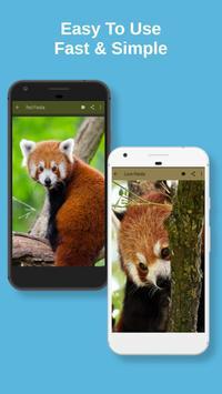 Red Panda Wallpaper screenshot 3
