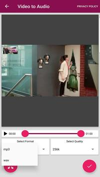 Video to MP3 Converter screenshot 2