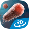 Bacteria interactive educational VR 3D आइकन