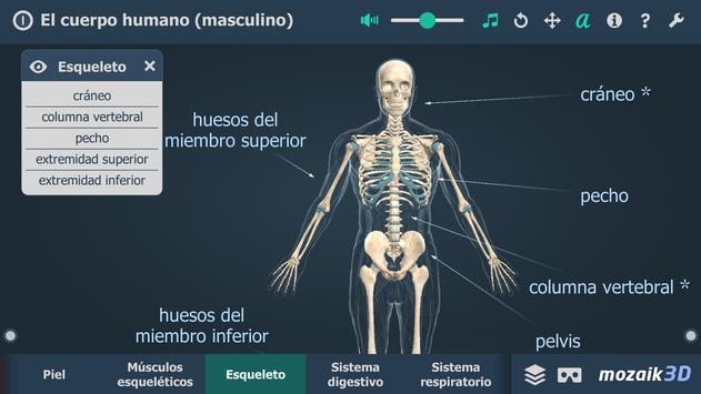 El cuerpo humano (masculino) en 3D educativo captura de pantalla 2