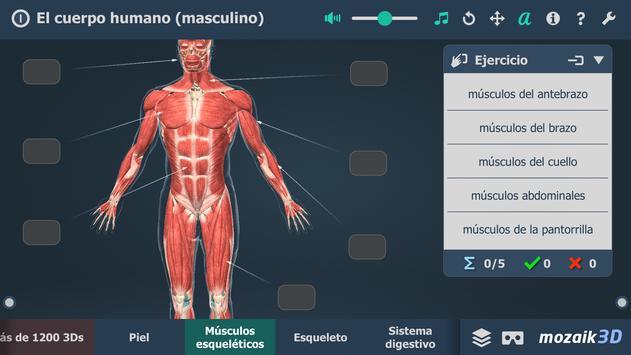 El cuerpo humano (masculino) en 3D educativo captura de pantalla 4