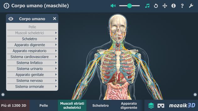 3 Schermata Corpo umano (maschile), 3D educativo